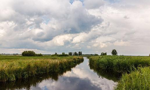 Natuur &  Landschap is een specialisme van freelance tekstschrijver Eric Hoogeweg.